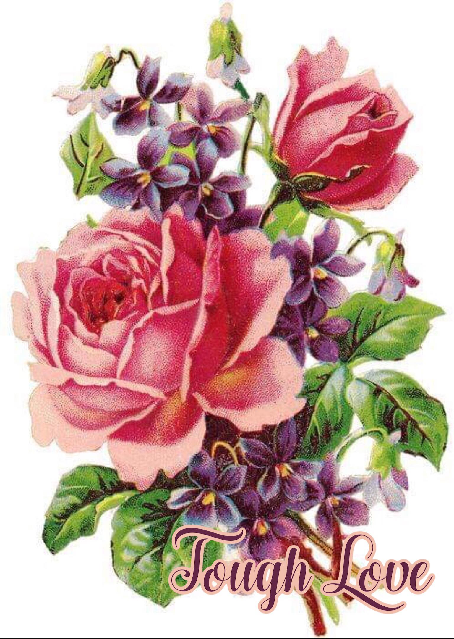 "a vintage bouquet of roses and violets with the words ""tough love"""